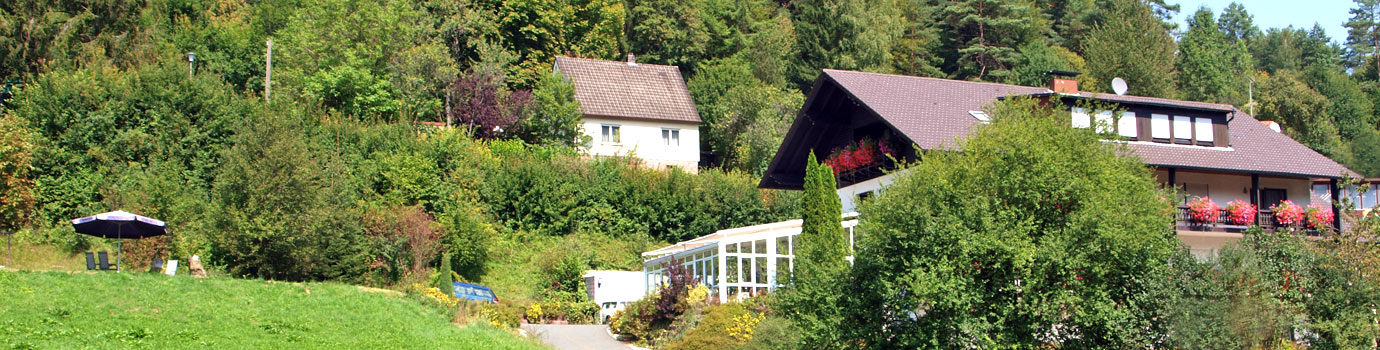 Lympho-Opt Therapiezentrum in Hirschbach